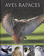Aves rapaces